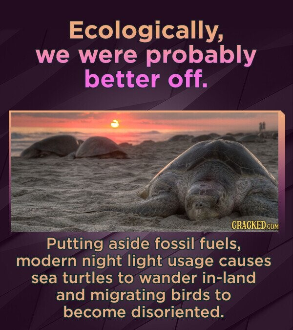 Ecologically, we were probably better off. CRACKED COM Putting aside fossil fuels, modern night light usage causes sea turtles to wander in-land and m