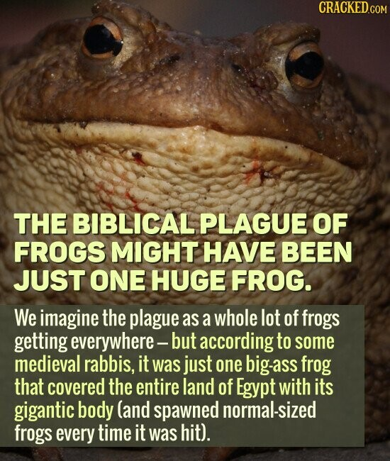 THE BIBLICAL PLAGUE OF FROGS MIGHT HAVE BEEN JUST ONE HUGE FROG. We imagine the plague as a whole lot of frogs getting everywhere- but according to some medieval rabbis, it was just one big-ass frog that covered the entire land of Egypt with its gigantic body (and spawned