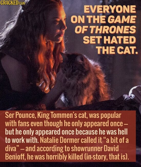 EVERYONE ON THE GAME OF THRONES SET HATED THE CAT. Ser Pounce, King Tommen's cat, was popular with fans even though he only appeared once - but he only appeared once because he was hell to work with. Natalie Dormer called it a bit of a diva -and according to
