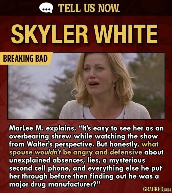 TELL US NOW. SKYLER WHITE BREAKING BAD MarLee M. explains, It's easy to see her as an overbearing shrew while watching the show from Walter's perspective. But honestly, what spouse wouldn't be angry and defensive about unexplained absences, lies, a mysterious second cell phone, and everything else he put her