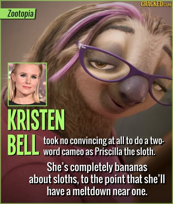 Zootopia KRISTEN BELL took no convincing at all to do a two- word cameo as Priscilla the sloth. She's completely bananas about sloths, to the point that she'll have a meltdown near one.