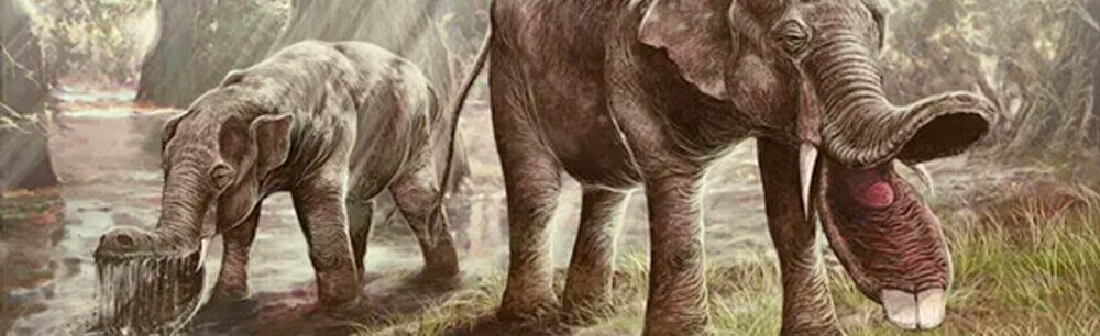 16 Ancient Animals That Make Us Glad They're Extinct