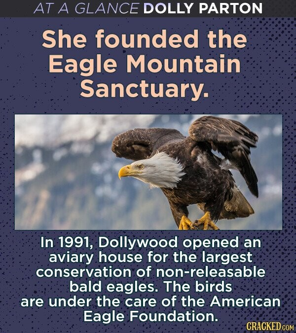 AT A GLANCE DOLLY PARTON She founded the Eagle Mountain Sanctuary. In 1991; Dollywood opened an aviary house for the largest conservation of non-releasable:: bald eagles. The birds are under the care of the American: Eagle Foundation. CRACKED COM
