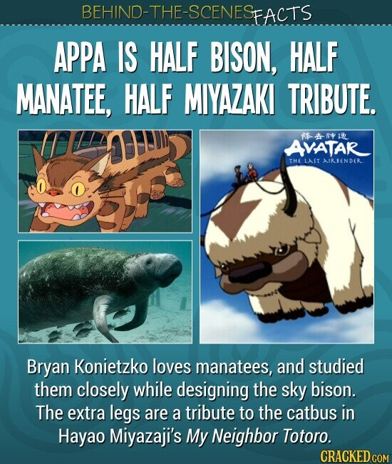 BEHIND-THE-SCENESp FACTS APPA IS HALF BISON, HALF MANATEE, HALF MIYAZAKI TRIBUTE. Bryan Konietzko loves manatees, and studied them closely while designing the sky bison. The extra legs are a tribute to the catbus in Hayao Miyazaji's My Neighbor Totoro.