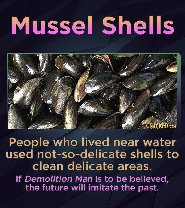 Mussel Shells People who lived near water used not-so-delicate shells to clean delicate areas. If Demolition Man is to be believed, the future will im