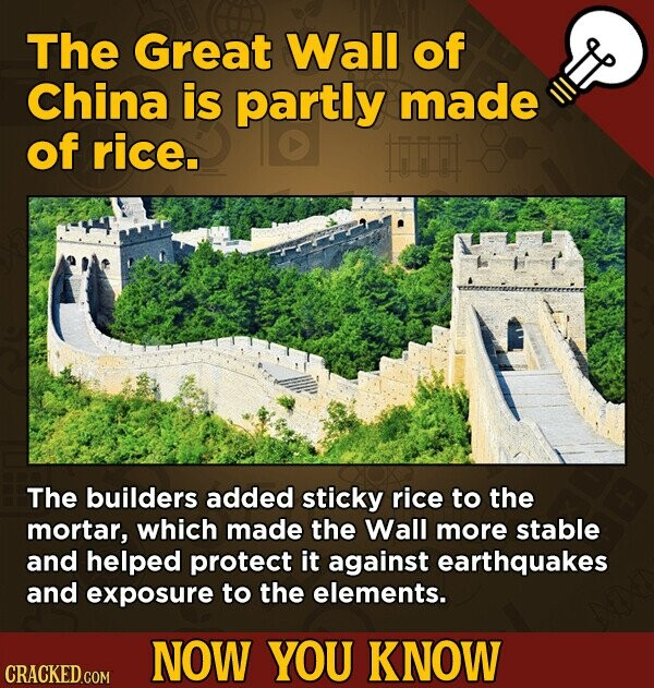 The Great Wall of China is partly made of rice. Fr The builders added sticky rice to the mortar, which made the Wall more stable and helped protect it against earthquakes and exposure to the elements. NOW YOU KNOW CRACKED.COM