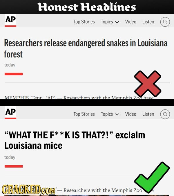 Honest Headlines AP Top Stories Topics Video Listen Researchers release endangered snakes in Louisiana forest today MEMPHIS.Tenn.(AP) Researchers with the Memphis Zoo have AP Top Stories Topics Video Listen WHAT THE F K IS THAT?! exclaim Louisiana mice today GRACKED.COM - Researchers with the Memphis Zoo