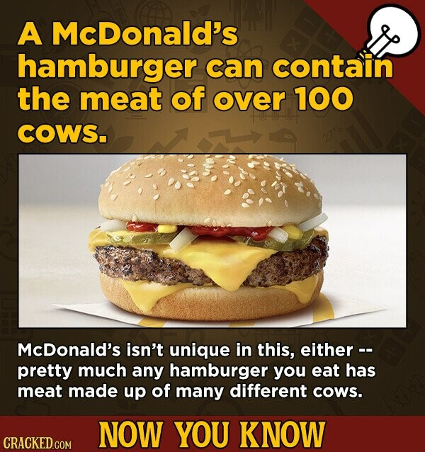 A McDonald's hamburger can contain the meat of over 100 COWS. McDonald's isn't unique in this, either -- pretty much any hamburger you eat has meat made up of many different cows. NOW YOU KNOW