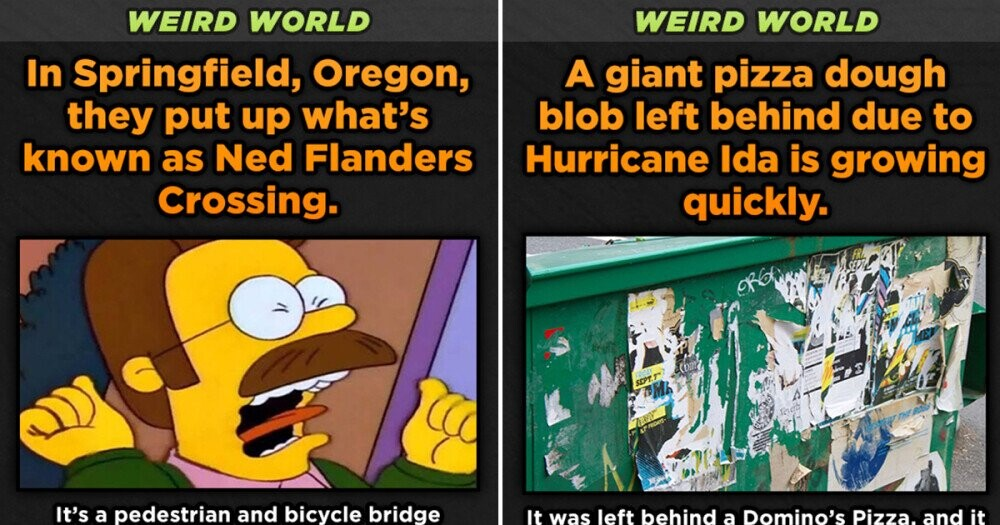 Weird World: 12 Ding-Dong Pieces Of News We Somehow Missed