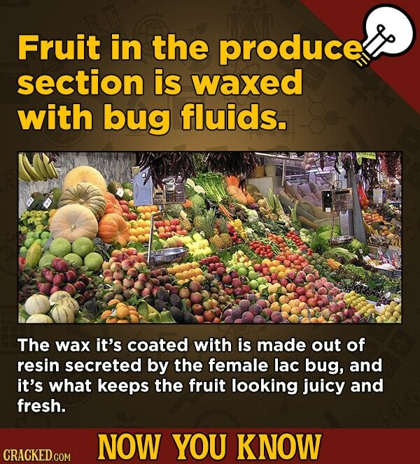 Fruit in the produce section is waxed with bug fluids. The wax it's coated with is made out of resin secreted by the female lac bug, and it's what keeps the fruit looking juicy and fresh. NOW YOU KNOW CRACKED.COM