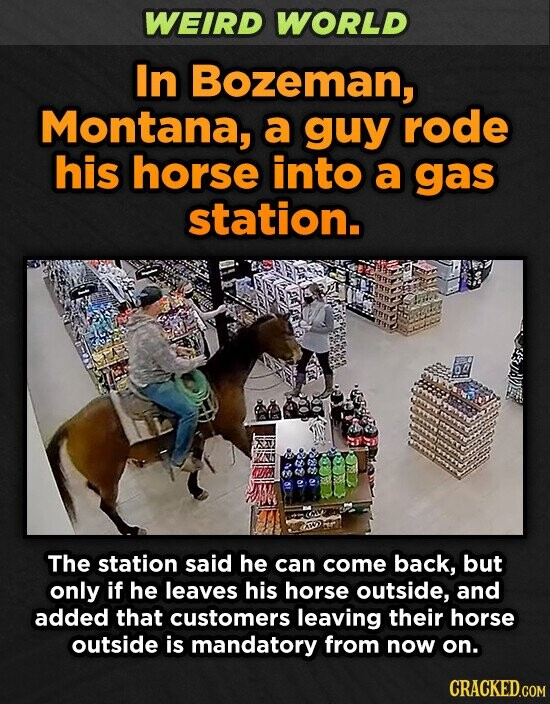 WEIRD WORLD In Bozeman, Montana, a guy rode his horse into a gas station. BRPe Be The station said he can come back, but only if he leaves his horse outside, and added that customers leaving their horse outside is mandatory from now on.