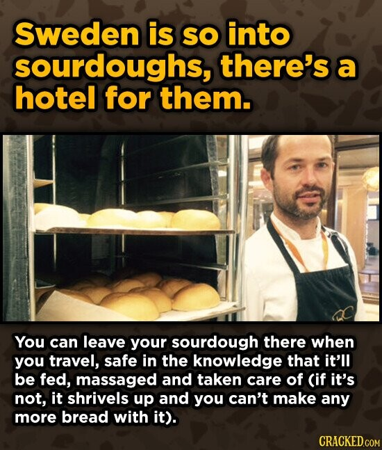Sweden is SO into sourdoughs, there's a hotel for them. You can leave your sourdough there when you travel, safe in the knowledge that it'll be fed, massaged and taken care of (if it's not, it shrivels up and you can't make any more bread with it). CRACKED.COM