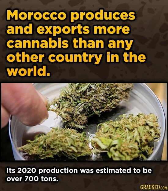 Morocco produces and exports more cannabis than any other country in the world. Its 2020 production was estimated to be over 700 tons. CRACKED.COM
