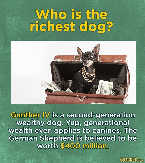 Who is the richest dog? 2 100 SHSARA Gunther IV is a second-generation wealthy dog. Yup, generational wealth even applies to canines. The German Shepherd is believed to be worth $400 million.