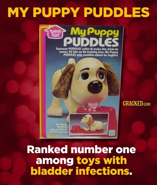 MY PUPPY PUDDLES ROMBER My PuPPY ROOM. PUDLES Squeeze PUDDLES' collor & make him drink his woter. Sit him on his training trou. My Puppu PUDDLES only