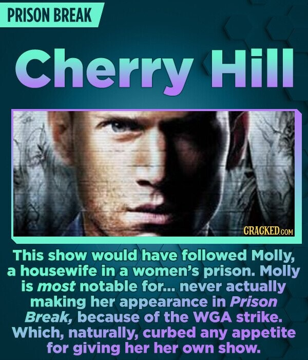 PRISON BREAK Cherry Hill CRACKED.COM This show would have followed Molly, a housewife in a women's prison. Molly is most notable for... never actually