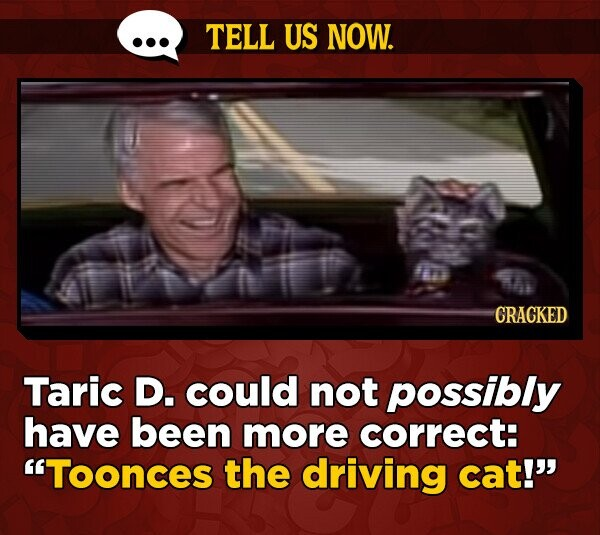 TELL US NOW. CRACKED Taric D. could not possibly have been more correct: Toonces the driving cat!