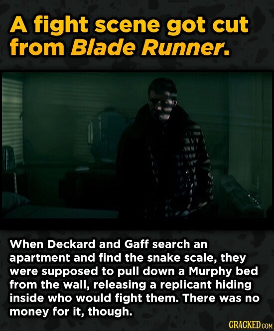 A fight scene got cut from Blade Runner. When Deckard and Gaff search an apartment and find the snake scale, they were supposed to pull down a Murphy