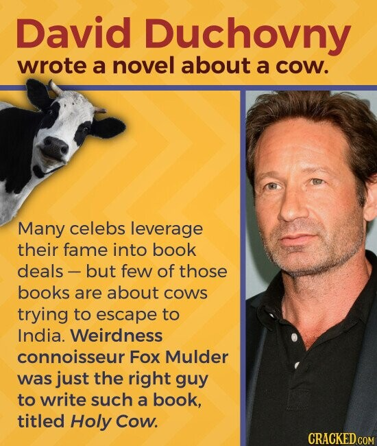David Duchovny wrote a novel about a cow. Many celebs leverage their fame into book deals - but few of those books are about coWs trying to escape to India. Weirdness connoisseur Fox Mulder was just the right guy to write such a book, titled Holy Cow.