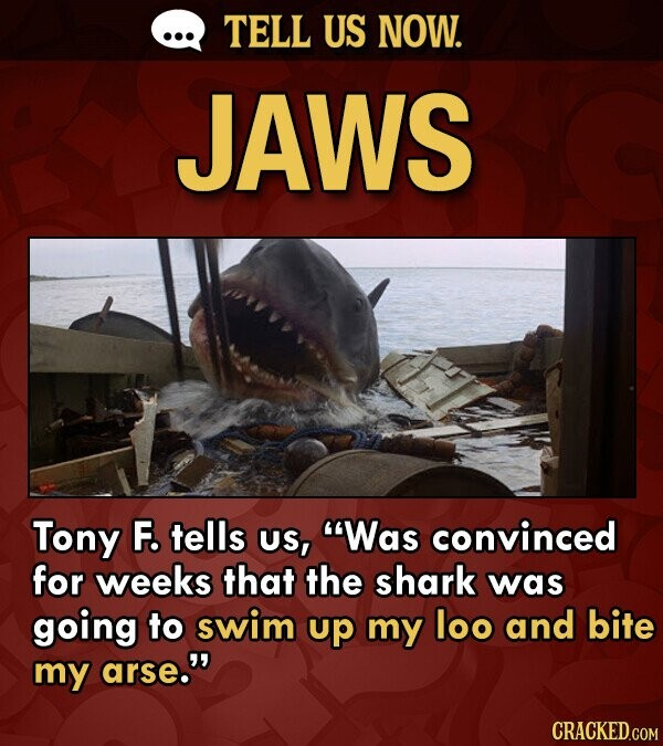 TELL US NOW. JAWS Tony F. tells US, Was convinced for weeks that the shark was going to swim up my loo and bite my arse.