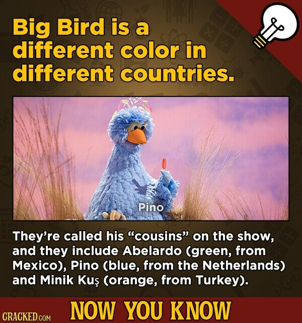 Big Bird is a different color in different countries. Pino They're called his cousins on the show, and they include Abelardo (green, from Mexico), Pino (blue, from the Netherlands) and Minik Kus (orange, from Turkey). NOW YOU KNOW CRACKED.COM
