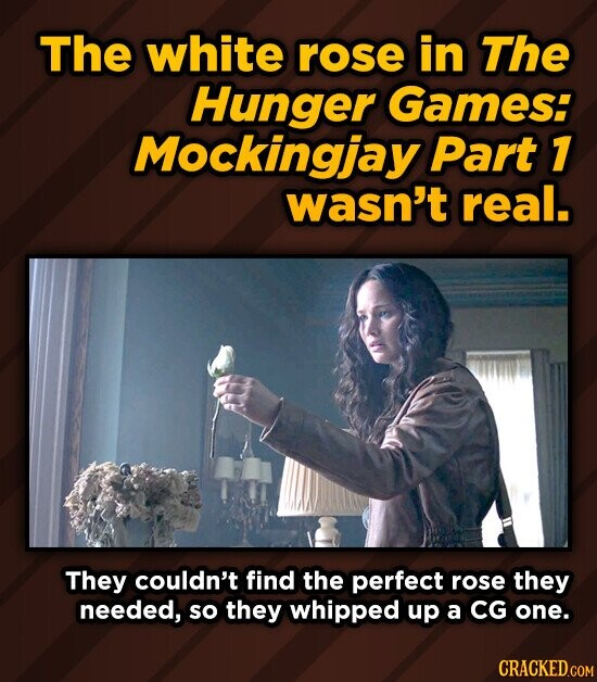 The white rose in The Hunger Games: Mockingjay Part 7 wasn't real. They couldn't find the perfect rose they needed, so they whipped up a CG one.