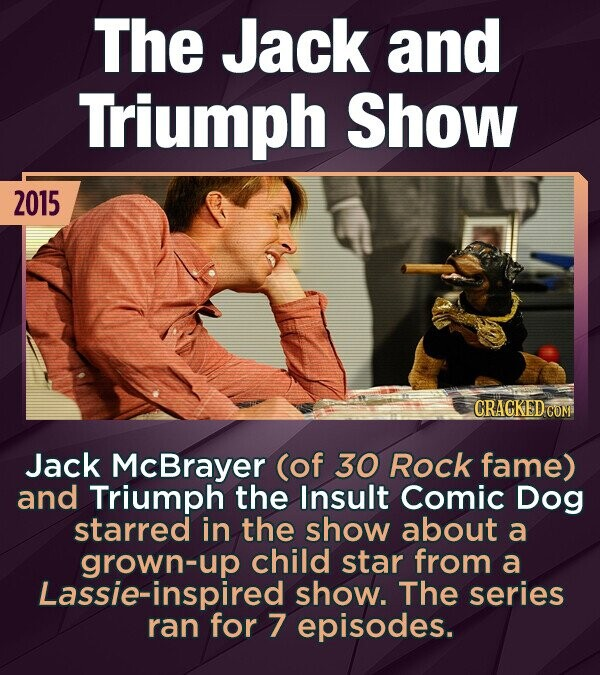 The Jack and Triumph Show 2015 CRACKED COM Jack McBrayer (of 30 Rock fame) and Triumph the Insult Comic Dog starred in the show about a grown-up child star from a Lassie-inspired show. The series ran for 7 episodes.