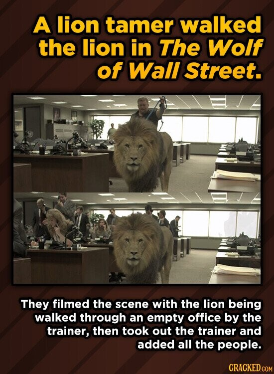 A lion tamer walked the lion in The Wolf of Wall Street. They filmed the scene with the lion being walked through an empty office by the trainer, then took out the trainer and added all the people.