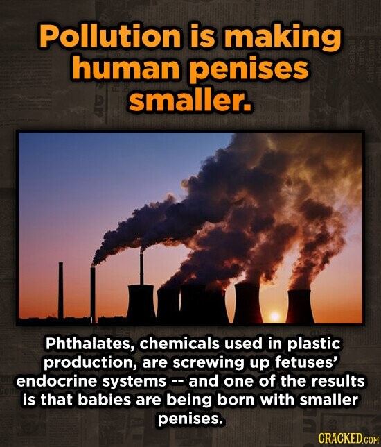 Pollution is making human penises smaller. 1alne Phthalates, chemicals used in plastic production, are screwing up fetuses' endocrine systemsc. and one of the results is that babies are being born with smaller penises. CRACKED.COM