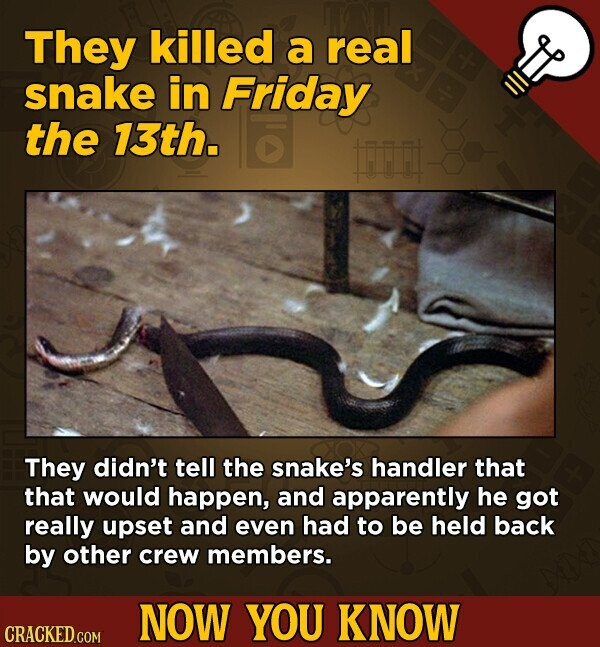They killed a real snake in Friday the 13th. Fr They didn't tell the snake's handler that that would happen, and apparently he got really upset and even had to be held back by other crew members. NOW YOU KNOW CRACKED.COM