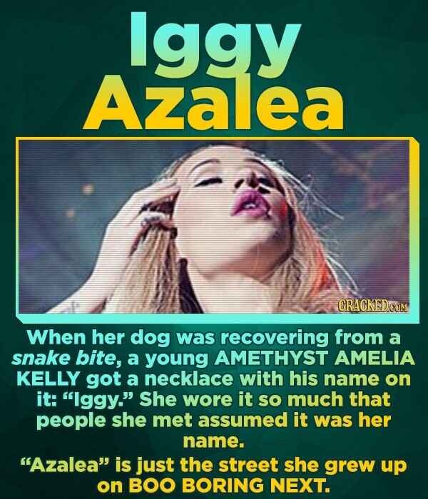 lggy Azalea CRACKED CON When her dog was recovering from a snake bite, a young AMETHYST AMELIA KELLY got a necklace with his name on it: Iggy. She w