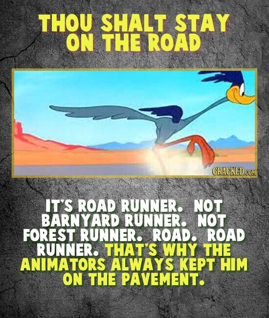 THOU SHALT STAY ON THE ROAD IT'S ROAD RUNNER. NOT BARNYARI RUNNER. NOT FOREST RUNNER. ROAD. ROAD RUNNER. THAT'S WHY THE ANIMATORS ALWAYS KEPT HIM ON THE PAVEMENT.