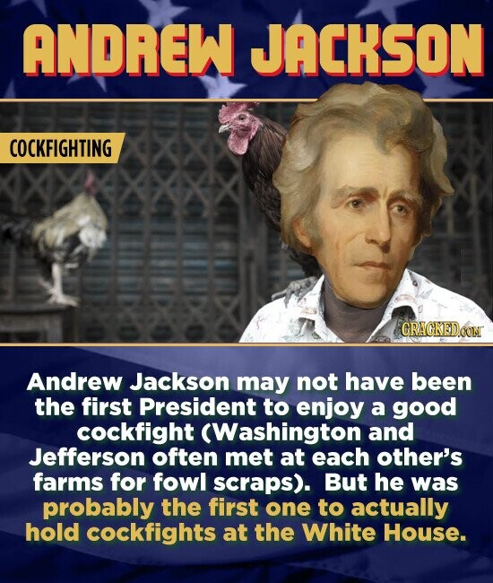 ANDREW JACKSON COCKFIGHTING Andrew Jackson may not have been the first President to enjoy a good cockfight (Washington and Jefferson often met at each other's farms for fowl scraps). But he was probably the first one to actually hold cockfights at the White House.