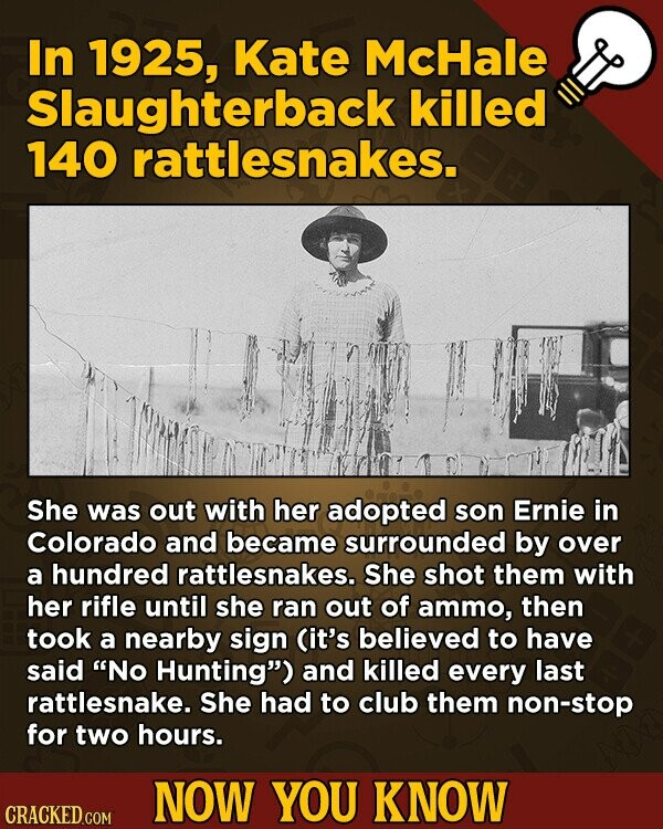 In 1925, Kate McHale Slaughterback killed 140 rattlesnakes. She was out with her adopted son Ernie in Colorado and became surrounded by over a hundred rattlesnakes. She shot them with her rifle until she ran out of ammo, then took a nearby sign (it's believed to have said No Hunting)