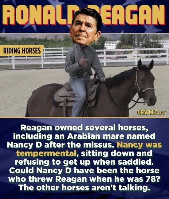 RONALY EAGAN RIDING HORSES CRAGKEDC Reagan owned several horses, including an Arabian mare named Nancy D after the missus. Nancy was tempermental, sitting down and refusing to get up when saddled. Could Nancy D have been the horse who threw Reagan when he was 78? The other horses aren't talking.