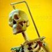 Boneman2 Cracked photo