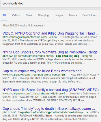 Why Are Cops Shooting Dogs? 5 Things You Should Know