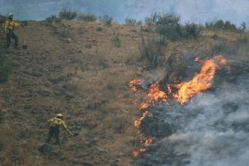 5 Ways Fighting Wildfires Is More Insane Than You Think