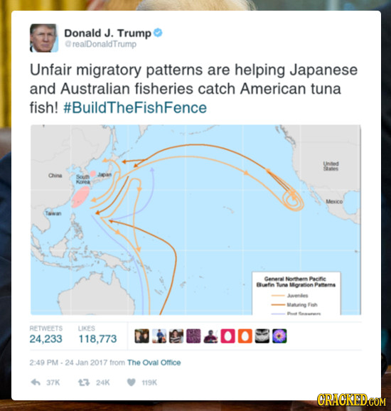 Donald J. Trump CrealDonaldTrump Unfair migratory patterns are helping Japanese and Australian fisheries catch American tuna fish! #BuildTheFishFence