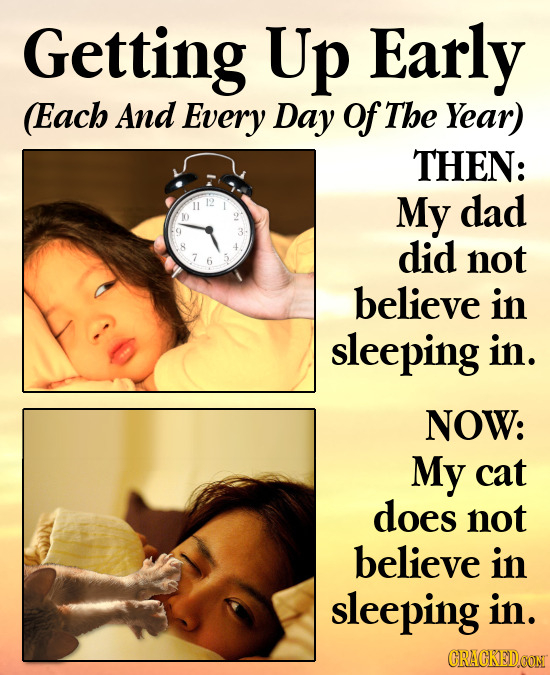 Getting Up Early Each And Every Day of The Year) THEN: 11 My dad did not believe in sleeping in. NOW: My cat does not believe in sleeping in. CRACKEDC