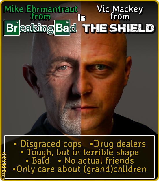 Mike Ehrmantraut Vic Mackey from is from Br 35 eaking Bad 56 THE SHIELD Disgraced cops .Drug dealers Tough, but in terrible shape DLE Bald No actual f