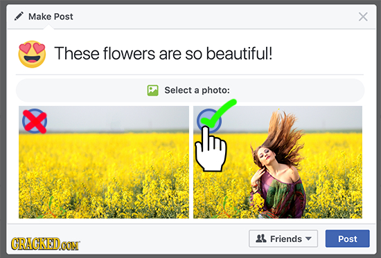 Make Post X These flowers are SO beautiful! Select a photo: CRACKEDCON 21 Friends Post