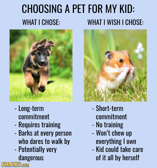 CHOOSING A PET FOR MY KID: WHAT I CHOSE: WHAT I WISH I CHOSE: - Long-term Short-term commitment commitment - Requires training - No training - Barks a