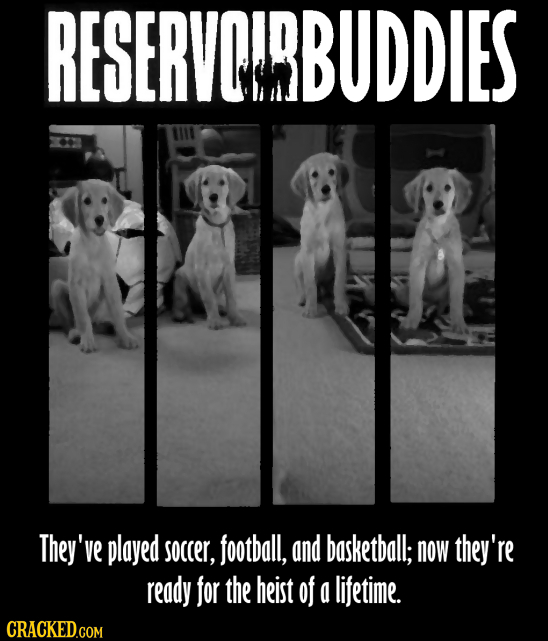 RESERVOIRBUDDIES They've played soccer, football, and basketball; now they're ready for the heist of a lifetime.