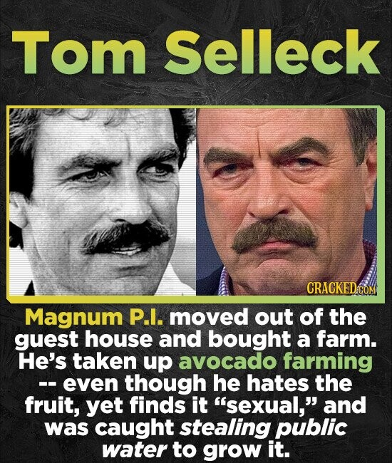 Tom Selleck CRACKEDCO Magnum P.I. moved out of the guest house and bought a farm. He's taken up avocado farming -even though he hates the fruit, yet f