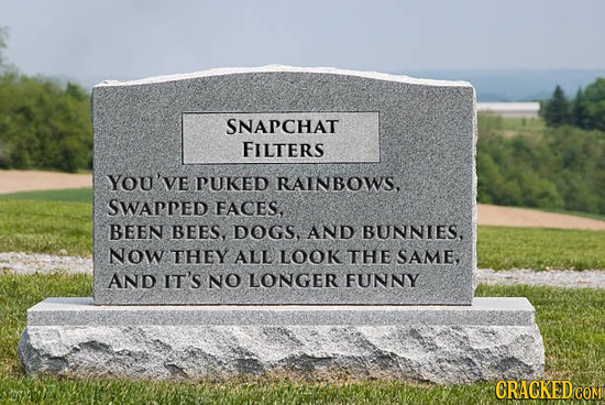 SNAPCHAT FILTERS YOU've PUKED RAINBOWS, SWAPPED FACES. BEEN BEES, DOGS. AND BUNNIES, Now THEY ALL LOOK THE SAME, AND IT'S NO LONGER FUNNY CRACKED COM