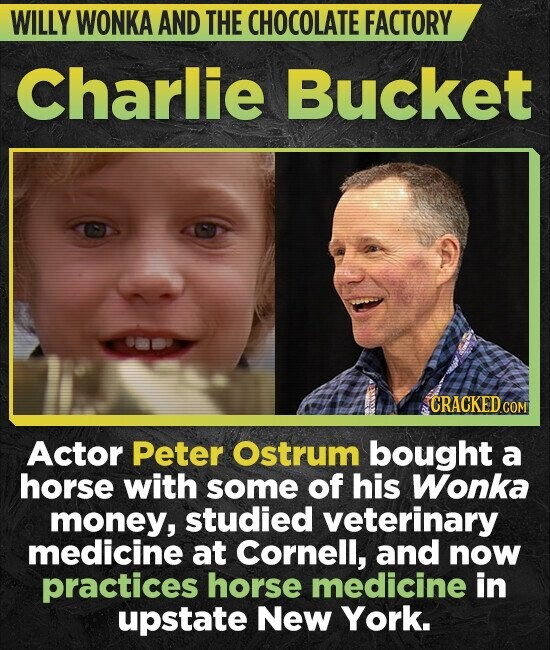 WILLY WONKA AND THE CHOCOLATE FACTORY Charlie Bucket CRACKEDcO Actor Peter Ostrum bought a horse with some of his Wonka money, studied veterinary medi