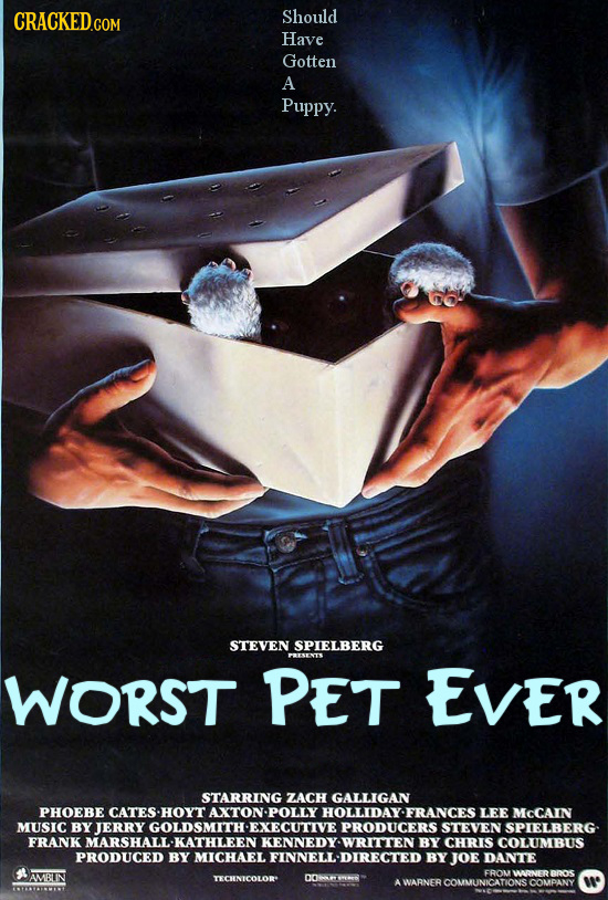 Should Have Gotten A Puppy. STEVEN SPIELBERG PESETE WORST PET EVER STARRING ZACH GALLIGAN PHOEBE CATES -HOYT AXTON POLLY HOLLIDAY FRANCES LEE MCCAIN M
