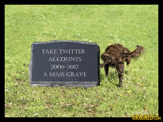 FAKE TWITTER ACCOUNTS 2006-2017 A MASS GRAVE