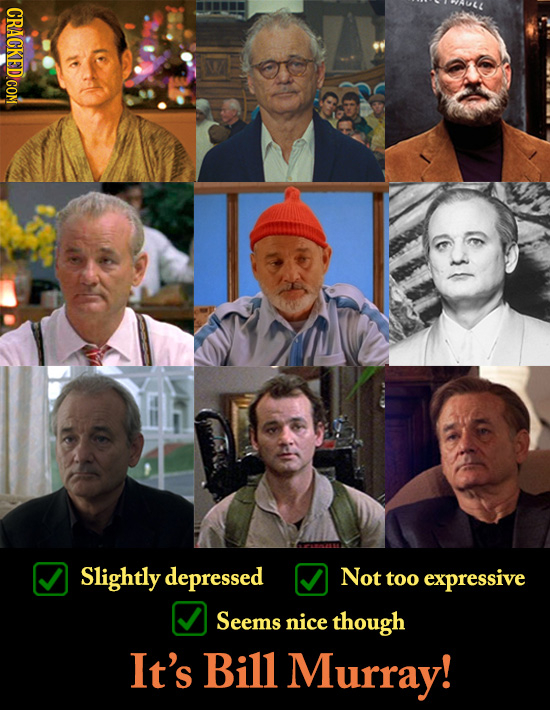 CRACKED COM Slightly depressed Not too expressive Seems nice though It's Bill Murray!